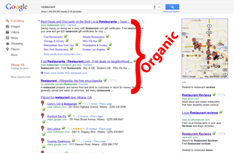 Google Results Organic Section